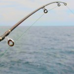 Sport Fishing - Spinning close-up
